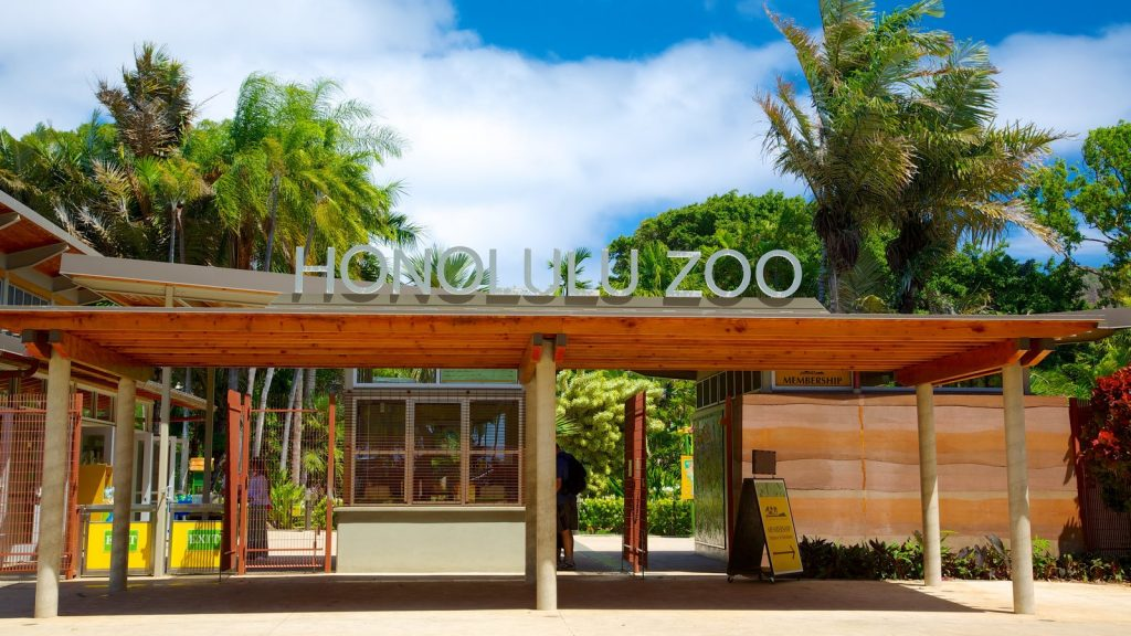 Animal Rights Hawaiʻi Publicizes Violations at the Honolulu Zoo